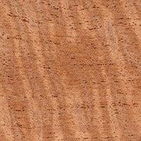 Humidor Cedar
