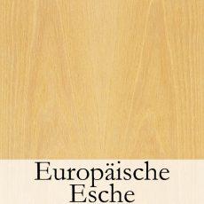 Europaeische Esche