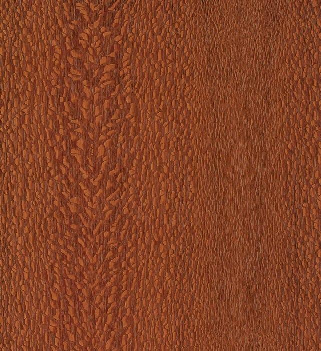 Humidor Silky Oak