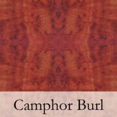 Camphor Burl