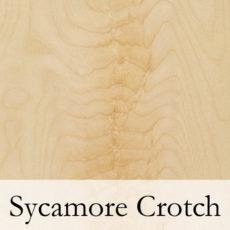 Sycamore Crotch